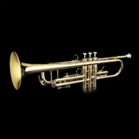 Grassi GRTR210 Trumpet Bb Gold Lacquer